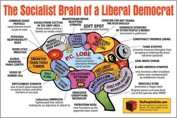 Brain_Socialist_Democrat