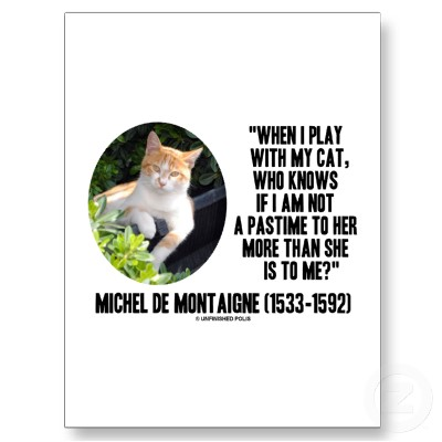 Montaigne on cats