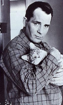 Kerouac-cat