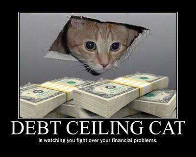Debt Ceiling Cat