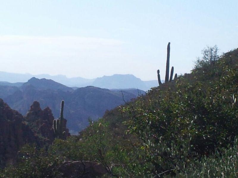 Peralta Canyon 3