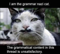 Nazi cat