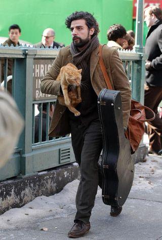 Llewyn davis and cat