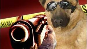 Dog shooter