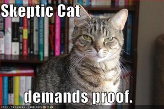 Skeptic-cat1