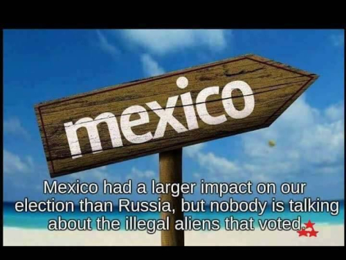 Mexican vote