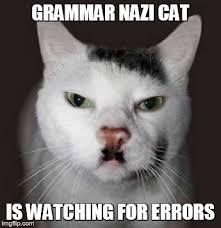 Nazi grammar cat
