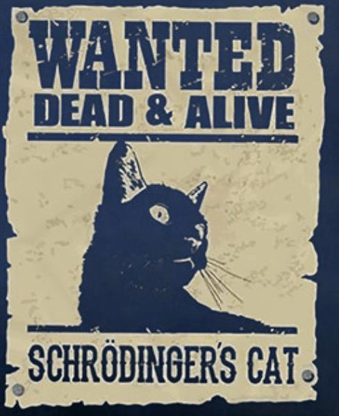 Schroedinger's Pussy